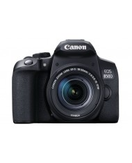 Canon EOS 850D kit 18-55 IS STM + Canon EF 50mm F/1.8 STM