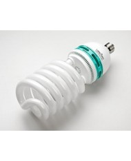 Energy Saving photo lamp 55W