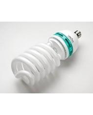 Energy Saving photo lamp 55W
